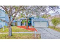 View 10252 Oasis Palm Dr Tampa FL
