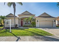 View 14624 Coral Berry Dr Tampa FL