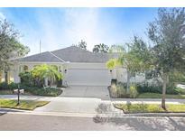 View 6814 Muncaster Ct Tampa FL