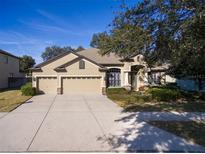 View 12706 Charity Hill Ct Riverview FL