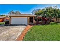 View 6844 Circle Creek Dr N Pinellas Park FL