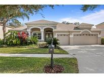 View 6614 Thornton Palms Dr Tampa FL