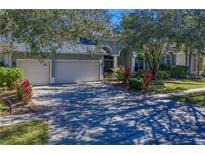 View 18115 Emerald Bay St Tampa FL