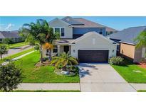 View 11802 Valhalla Woods Dr Riverview FL