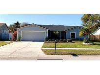 View 4920 Oakshire Dr Tampa FL