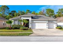 View 12709 Westwood Lakes Blvd Tampa FL