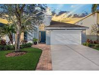 View 12219 Bishopsford Dr Tampa FL