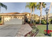 View 10207 Oasis Palm Dr Tampa FL