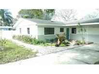 View 10102 N Oakleaf Ave Tampa FL