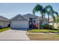 View 10239 Oasis Palm Dr Tampa FL