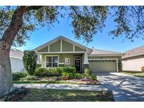 View 5013 Torrey Hills Ln Lutz FL