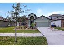 View 11831 Thicket Wood Dr Riverview FL