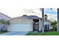 View 8525 Heyward Rd Tampa FL