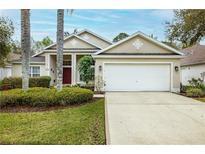 View 8261 Swann Hollow Dr Tampa FL