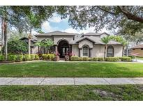 View 19135 Timber Reach Rd Tampa FL