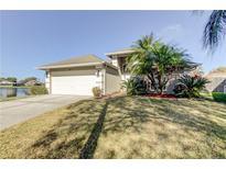 View 9015 Southbay Dr Tampa FL
