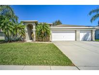 View 3820 Milflores Dr Ruskin FL