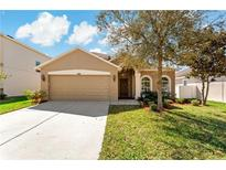 View 30616 Casewell Pl Wesley Chapel FL