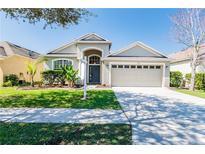 View 8714 Sandy Plains Dr Riverview FL