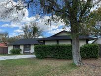 View 14013 Cherry Lake Dr Tampa FL