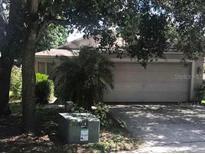 View 8750 Morrison Oaks Ct Temple Terrace FL