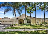 View 17809 Arbor Haven Dr Tampa FL