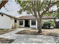 View 5216 Bellefield Dr Tampa FL