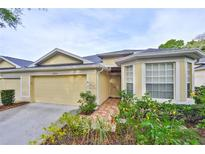 View 10804 Ashford Oaks Dr Tampa FL