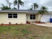 View 7336 Filbert Ln Tampa FL