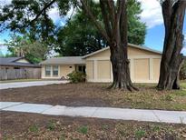View 14011 Cherry Lake Dr Tampa FL