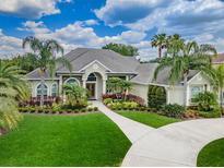 View 6251 Kingbird Manor Dr Lithia FL