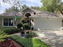 View 2205 Green Oaks Ln Tampa FL