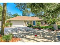 View 14903 Northwood Village Ln Tampa FL