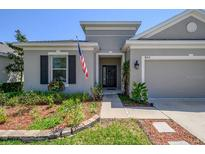 View 8214 Willow Beach Dr Riverview FL