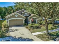 View 15411 Martinmeadow Dr Lithia FL