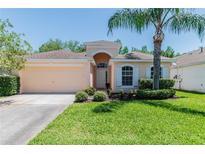 View 12203 Bishopsford Dr Tampa FL