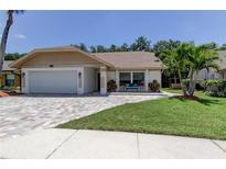 View 11807 Snapdragon Rd Tampa FL