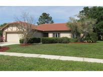 View 18311 Sturbridge Ct Tampa FL