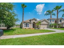 View 9116 Tollison Loop Land O Lakes FL