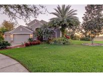 View 10127 Caraway Spice Ave Riverview FL