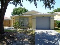 View 4412 W Pintor Pl Tampa FL