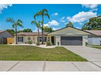 View 5815 Bitter Orange Ave Tampa FL