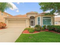 View 8312 Canterbury Lake Blvd Tampa FL