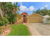 View 1017 Eckles Dr Tampa FL