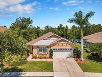 View 5404 Hammock View Ln Apollo Beach FL