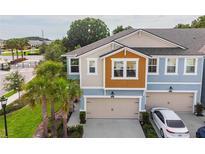 View 17804 Althea Blue Pl Lutz FL
