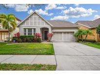 View 14637 Chatsworth Manor Cir Tampa FL
