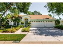View 22738 Magnolia Trace Blvd Lutz FL