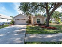 View 7136 Colony Pointe Dr Riverview FL