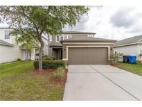 View 7951 Carriage Pointe Dr Gibsonton FL